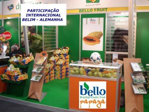 Bello Fruit Imp e Exp LTDA (5) (Large)